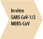 Step 1 - In vitro SARS CoV-1/2 and MERS-CoV